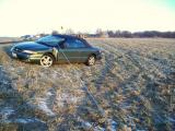 Car in field with power line laying on hood.